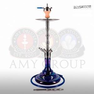 AMY BOSSEIDON R