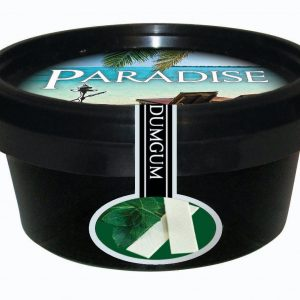 Paradise Steam Stones – Dum Gum (Spearmint)
