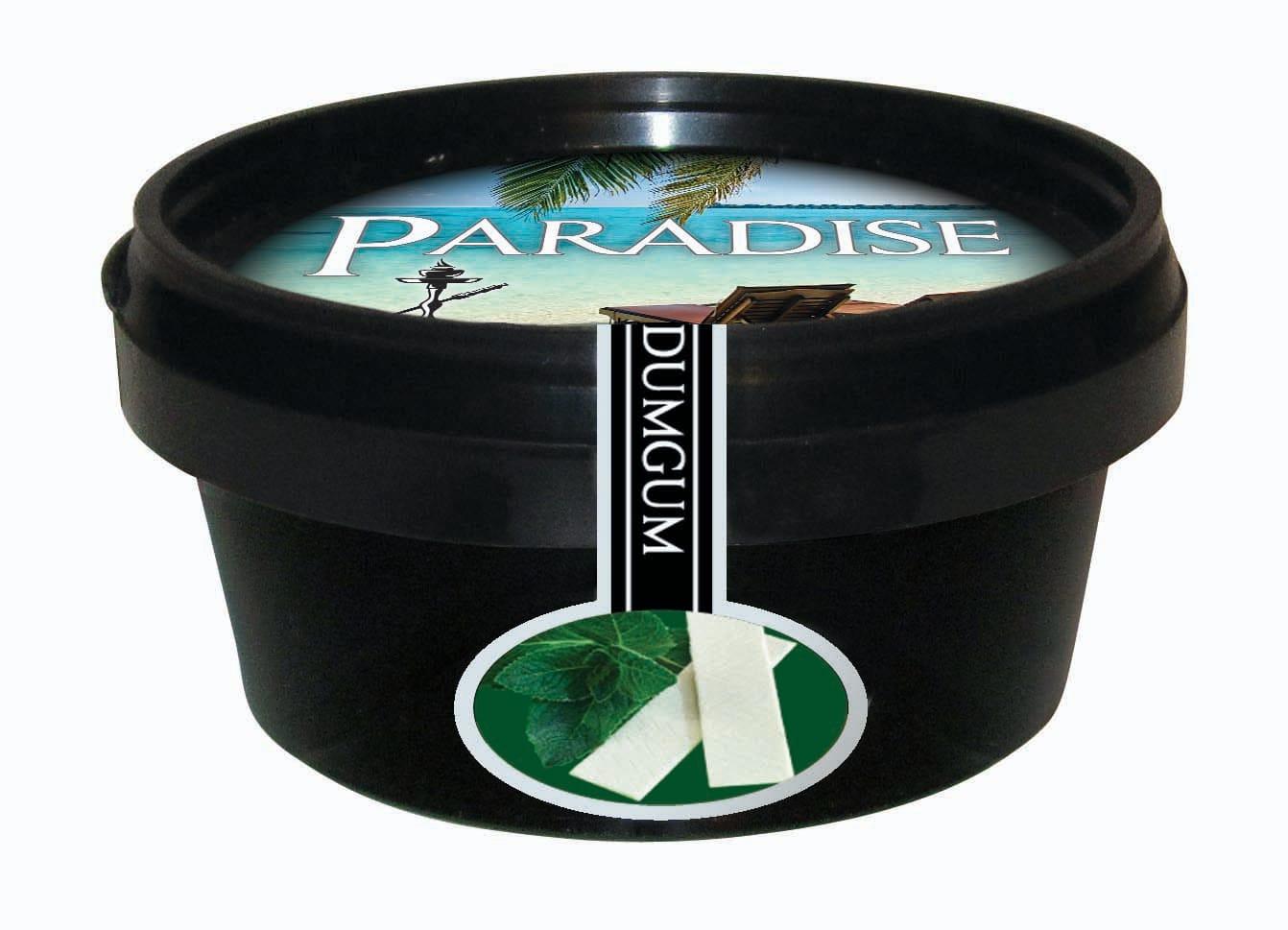 Paradise Steam Stones – Dum Gum (Spearmint)