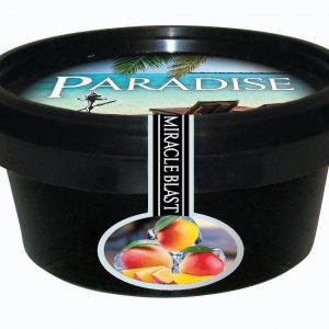 Paradise Steam Stones – Miracle Blast (Mango Ice)