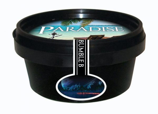 Paradise Steam Stones – Bumble B (Wildberry Mix, Passievrucht en Menthol)